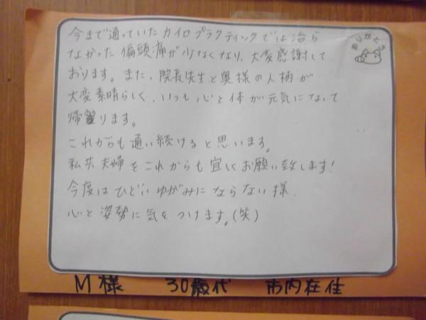 IMGP3978.JPG