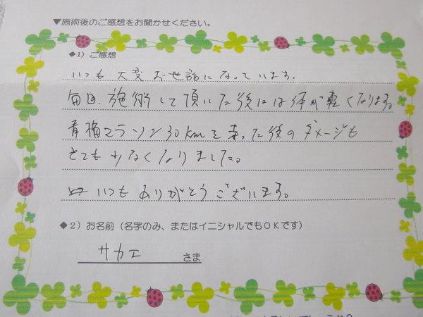IMGP4211.JPG
